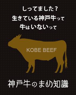 神戸牛豆知識